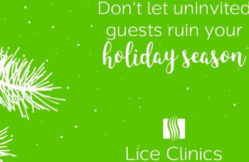 no nit noggins holiday head lice prevention